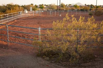 Stonegate Equestrian Park