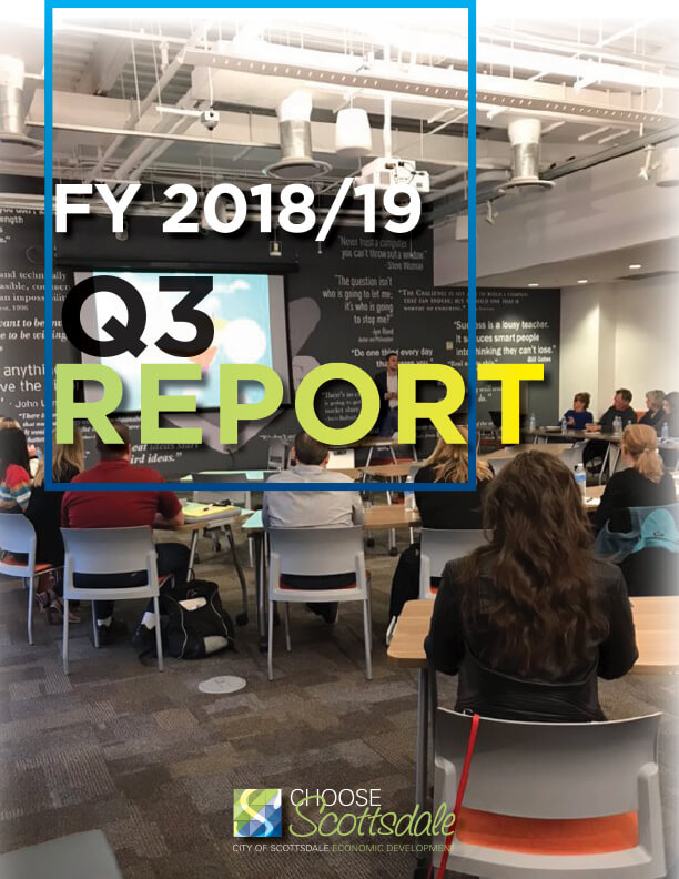 Cover image of 2018-19 Q3 report