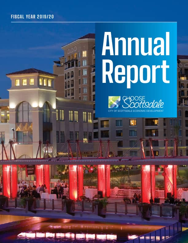 Cover image of 2020 Annual Report