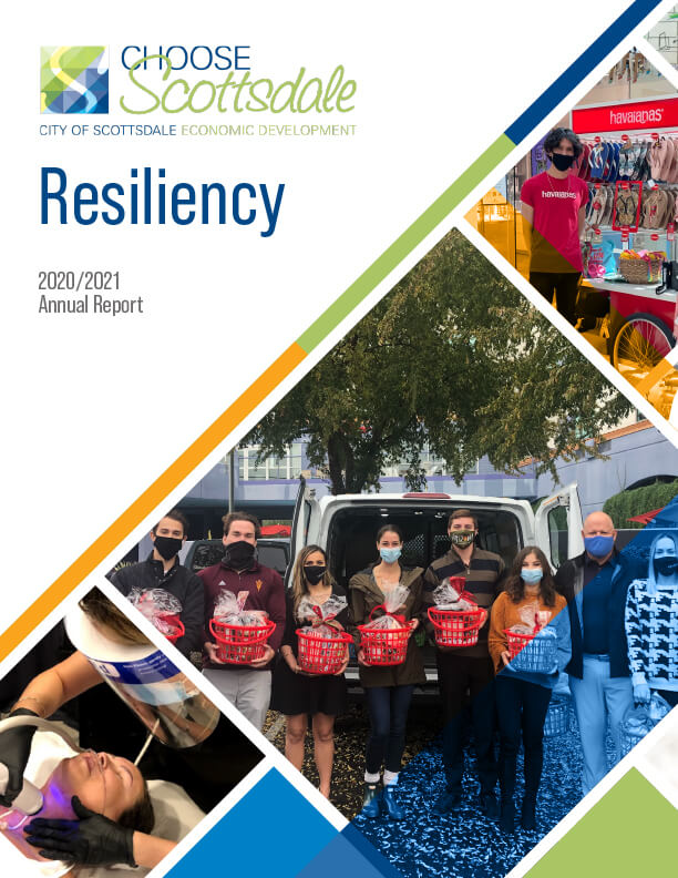 cover image of the fy 2020-2021 annual report